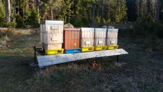 (08) Duben - 1. stanoviště před výměnou nově vyrobených nástavků