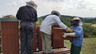 (21) Květen - První medobraní na stanovišti č. 1