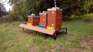 (23) Duben - Finální instalace náletu pro palpost včelích úlů na 1. stanovišti